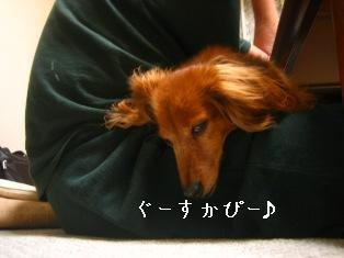 IMG_4336blog.jpg