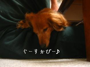 IMG_4337blog.jpg