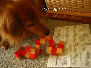 IMG_4349blog.jpg
