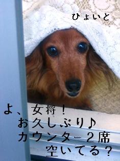 IMG_4455blog.jpg