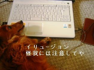 IMG_4483blog.jpg