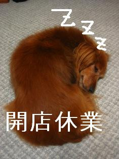 IMG_4500blog.jpg
