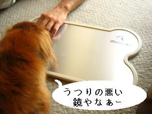IMG_4513blog.jpg
