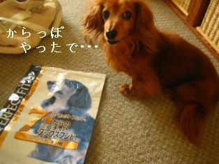 IMG_4543blog.jpg
