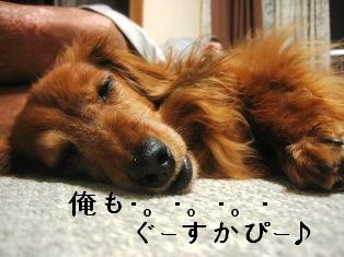 IMG_4580blog.jpg