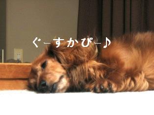 IMG_4648blog.jpg
