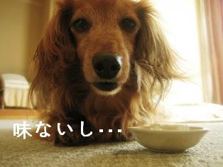 IMG_4709blog.jpg