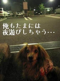 IMG_4776blog.jpg