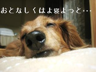 IMG_4794blog.jpg