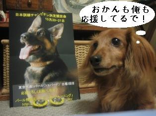 IMG_4856blog.jpg