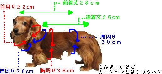 IMG_4871blog.jpg