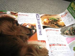 IMG_4914blog.jpg