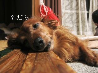 IMG_4931blog.jpg