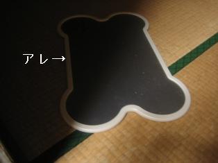 IMG_4934blog.jpg