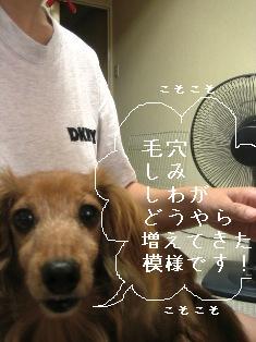 IMG_5009blog.jpg