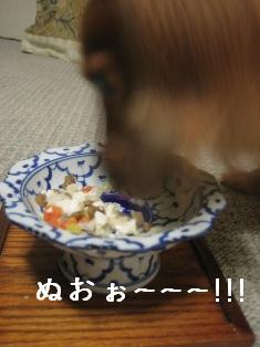 IMG_5403blog.jpg
