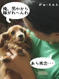 IMG_5451blog.jpg