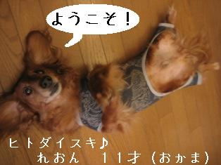 IMG_5503blog.jpg