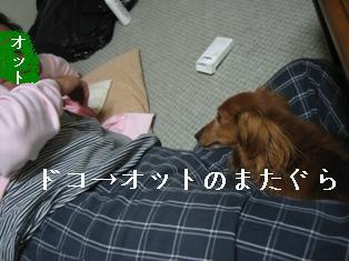 IMG_5607blog.jpg