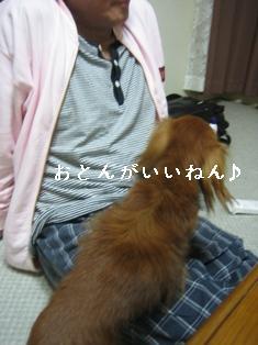 IMG_5609blog.jpg