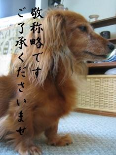 IMG_5754blog.jpg
