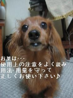 IMG_5792blog.jpg