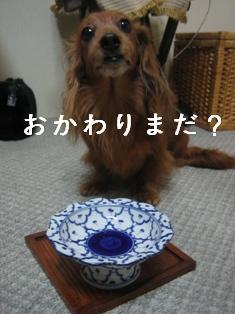 IMG_5798blog.jpg