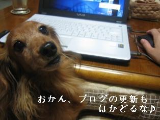 IMG_5840blog.jpg