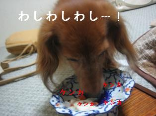 IMG_5849blog.jpg