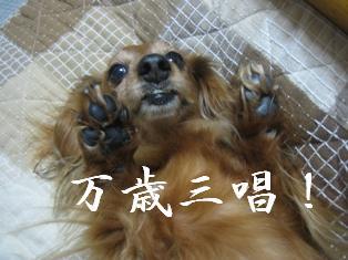 IMG_5895blog.jpg