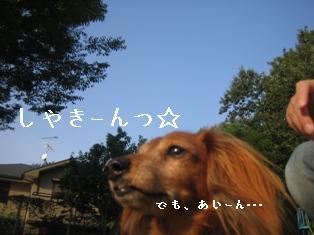 IMG_6060blog.jpg