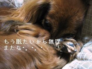 IMG_6170blog.jpg