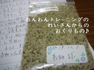 IMG_6174blog.jpg
