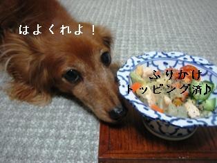 IMG_6180blog.jpg
