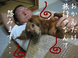 IMG_6256blog.jpg