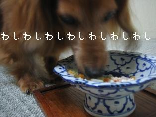 IMG_6464blog.jpg