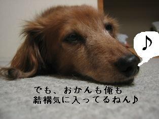 IMG_6614blog.jpg