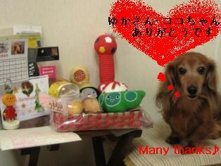 IMG_6690blog.jpg
