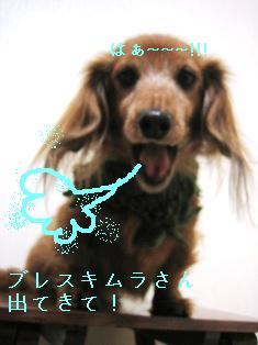 IMG_6764blog.jpg