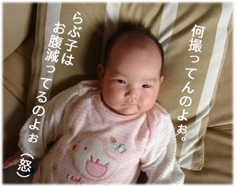 20061201124534.jpg