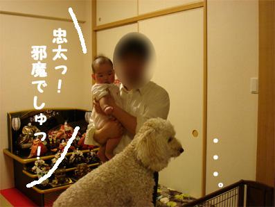 20070125183443.jpg