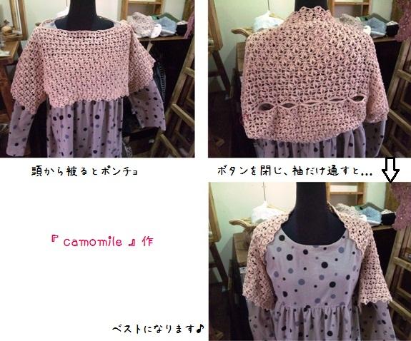 camo04-1_20120212114358.jpg