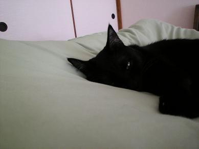起きて移動してください