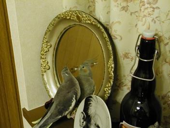 鏡とトゥイ