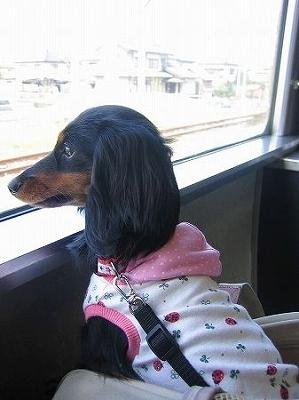 Dog*Stampさん。