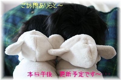 20071126120137.jpg