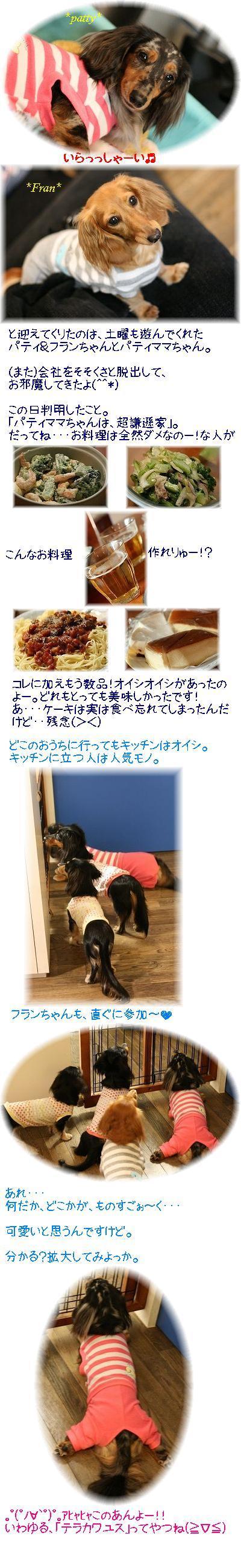 IMG_1551a.jpg
