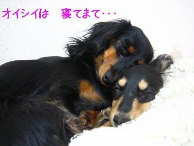 IMG_3193.jpg