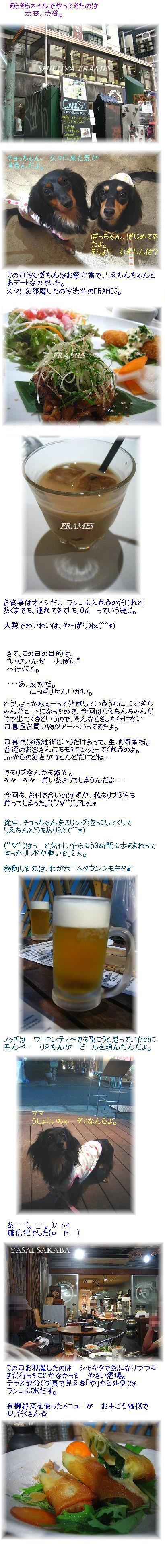 nippori1.jpg