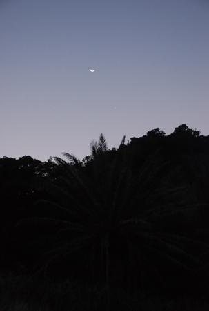 07108-7.jpg